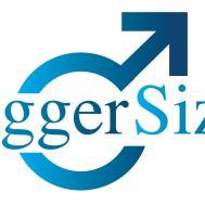 biggersizelogo.jpg